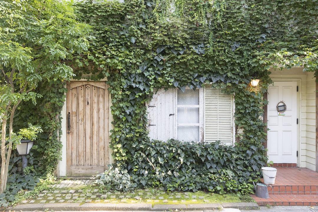 渋谷・世田谷-mimosa house Country(スタジオパスティス・バジル